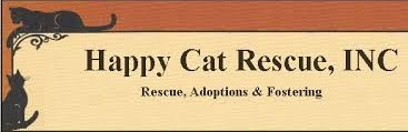 Happy Cat Family Fun Day in Altamont