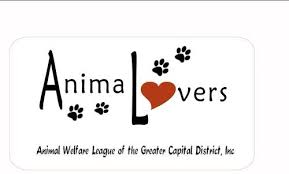 AnimaLovers seeks adoption volunteers