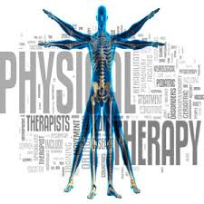 Discussion highlights physical therapy